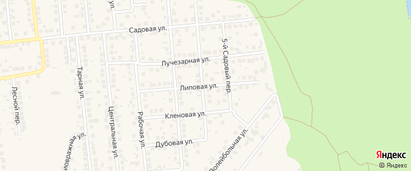 Липовая улица на карте поселка Дубового с номерами домов