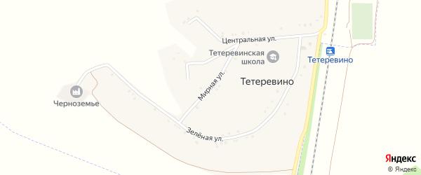 Мирная улица на карте села Тетеревино с номерами домов