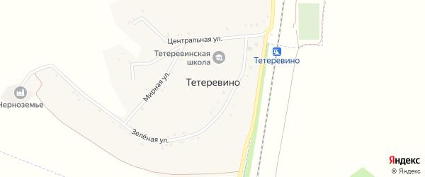 Центральная улица на карте села Тетеревино с номерами домов