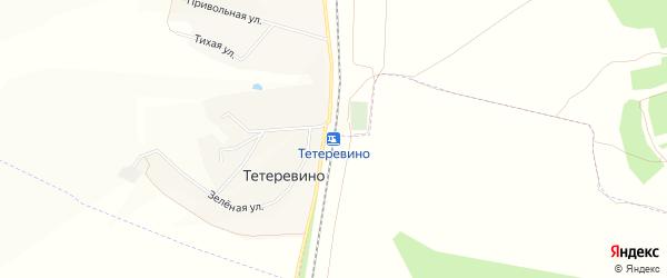 СТ Тетеревино на карте села Тетеревино с номерами домов