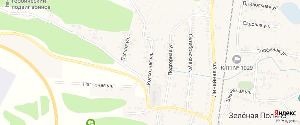 Колхозная улица на карте села Зеленой Поляны с номерами домов