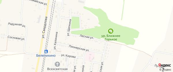 Лесная улица на карте села Беленихино с номерами домов