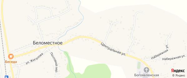 Центральная улица на карте Беломестного села с номерами домов
