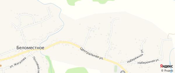 Центральный 1-й переулок на карте Беломестного села с номерами домов