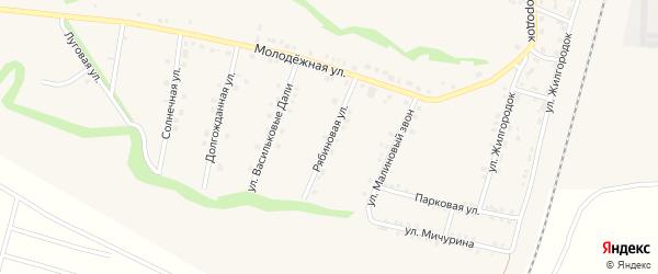 Рябиновая улица на карте села Гостищево с номерами домов