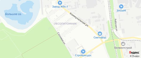 Березовая улица на карте Белгорода с номерами домов