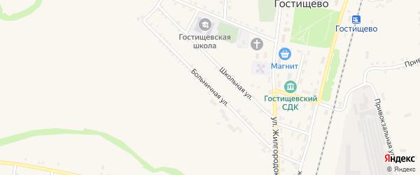 Больничная улица на карте села Гостищево с номерами домов
