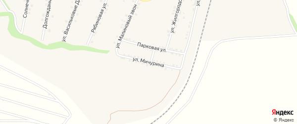 Улица Мичурина на карте села Гостищево с номерами домов