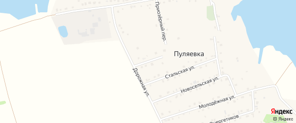 Переулок Новоселов на карте села Пуляевки с номерами домов