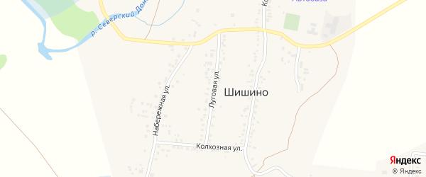 Луговая улица на карте села Шишино с номерами домов