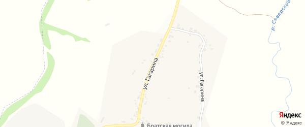 Улица Гагарина на карте села Петропавловки с номерами домов