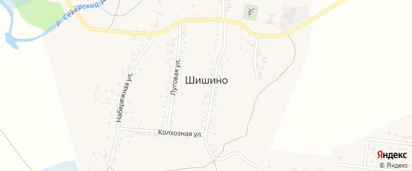 Весенняя улица на карте села Шишино с номерами домов