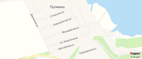 Молодежная улица на карте села Пуляевки с номерами домов