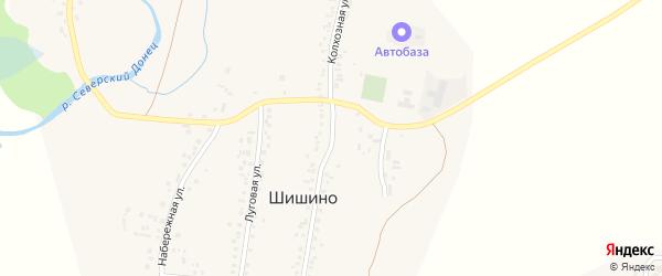 Колхозная улица на карте села Шишино с номерами домов