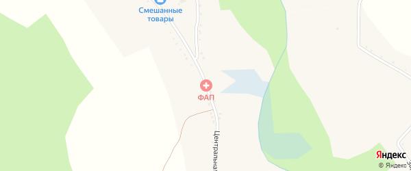 Центральная улица на карте села Озерово с номерами домов