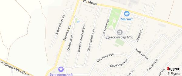 Центральная улица на карте Новосадового поселка с номерами домов