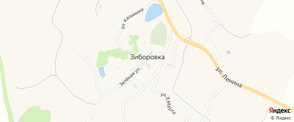 Улица 8 Марта на карте села Зиборовки с номерами домов