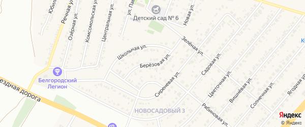 Березовая улица на карте Новосадового поселка с номерами домов