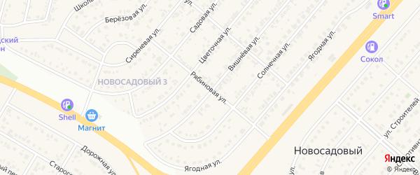 Рябиновая улица на карте Новосадового поселка с номерами домов