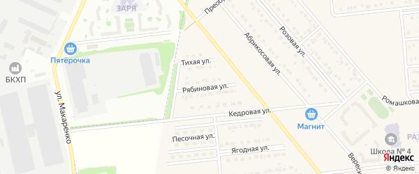 Рябиновая улица на карте поселка Разумного с номерами домов