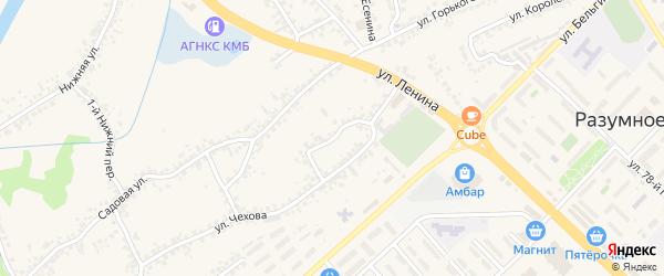 Чехова 1-й переулок на карте поселка Разумного с номерами домов