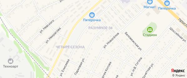 Парковая улица на карте поселка Разумного с номерами домов