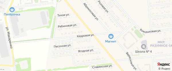 Кедровая улица на карте поселка Разумного с номерами домов