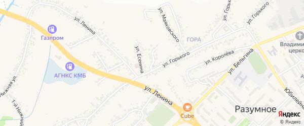 Улица Пушкина на карте поселка Разумного с номерами домов