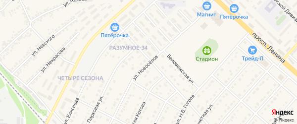 Улица Новоселов на карте поселка Разумного с номерами домов