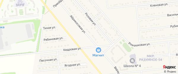 Абрикосовая улица на карте поселка Разумного с номерами домов