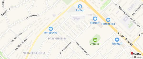 Заречная улица на карте поселка Разумного с номерами домов