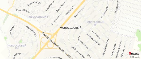 Новосадовое СТ на карте Новосадового поселка с номерами домов