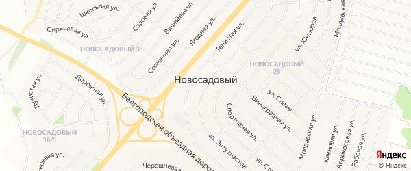 Карта села Новой Деревни в Белгородской области с улицами и номерами домов
