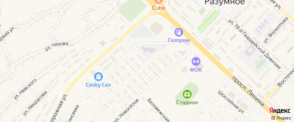 Ясная улица на карте поселка Разумного с номерами домов