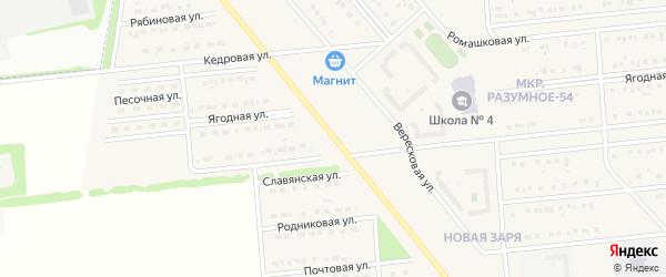 Вересковая улица на карте поселка Разумного с номерами домов