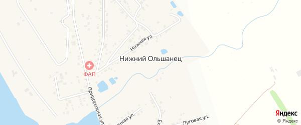 Луговой переулок на карте села Нижнего Ольшанца с номерами домов