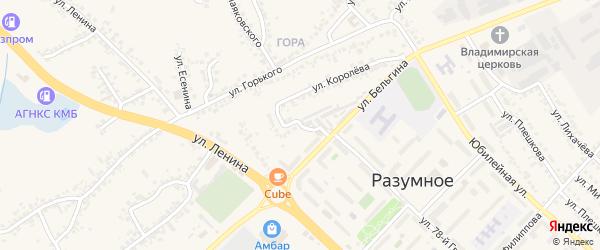 Переулок Бельгина на карте поселка Разумного с номерами домов
