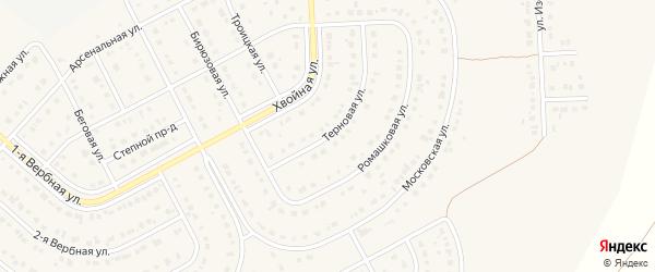 Терновая улица на карте Новосадового поселка с номерами домов