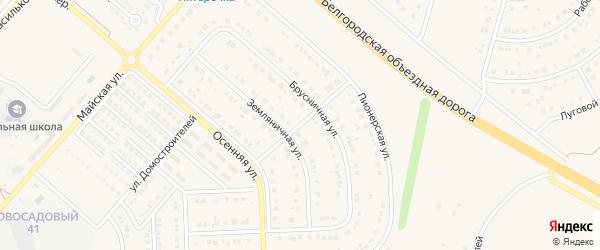 Брусничный переулок на карте Новосадового поселка с номерами домов