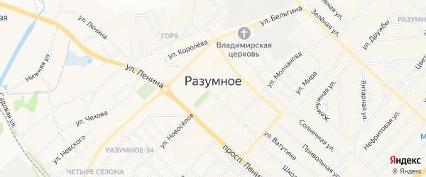 Карта поселка Разумного в Белгородской области с улицами и номерами домов