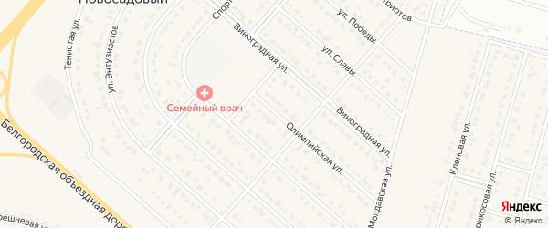 Олимпийская улица на карте Новосадового поселка с номерами домов