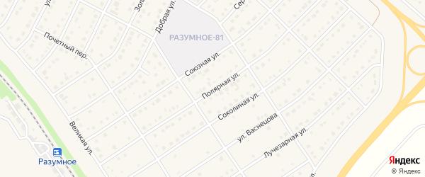 Полярная улица на карте поселка Разумного с номерами домов