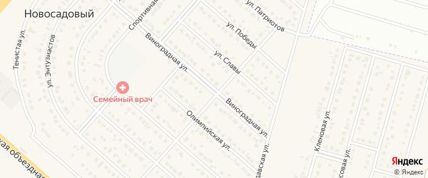 Виноградная улица на карте Новосадового поселка с номерами домов