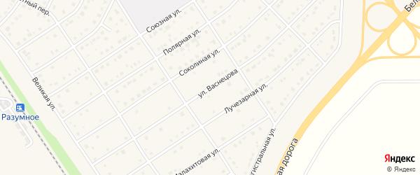 Улица Васнецова на карте поселка Разумного с номерами домов