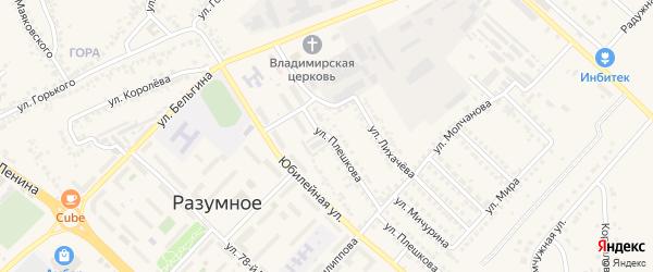 Улица Плешкова на карте поселка Разумного с номерами домов