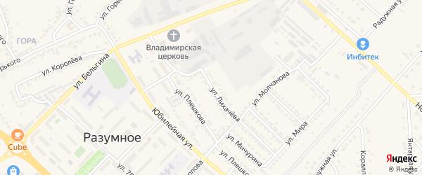 Улица Лихачева на карте поселка Разумного с номерами домов