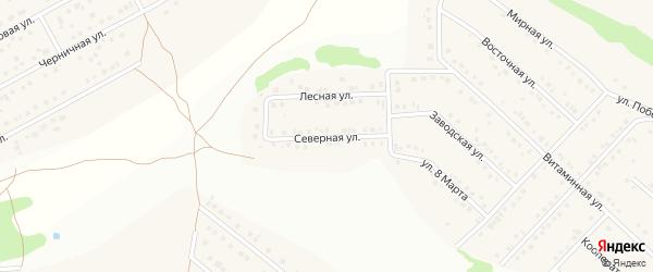 Северная улица на карте села Ближней Игуменки с номерами домов