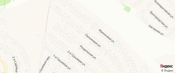 Пальмовая улица на карте села Ближней Игуменки с номерами домов