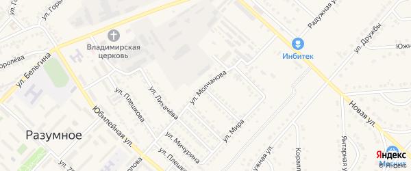 Улица Молчанова на карте поселка Разумного с номерами домов