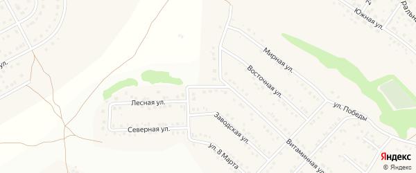 Витаминный переулок на карте села Ближней Игуменки с номерами домов